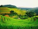 Vietnam020