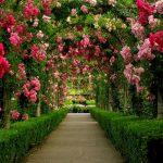 view post DOT_BC_VI_Vancouver_Island_Victoria_Butchart_Gardens_02
